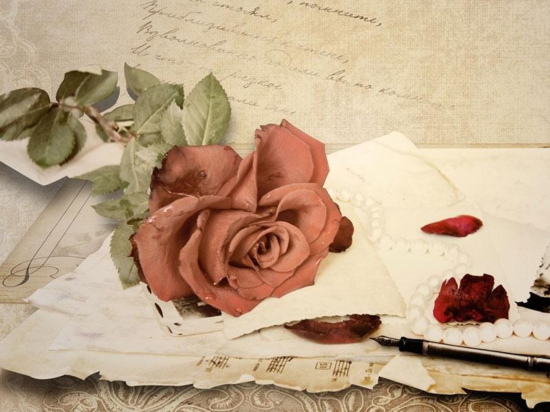 Το γράμμα της Όλγας - 800